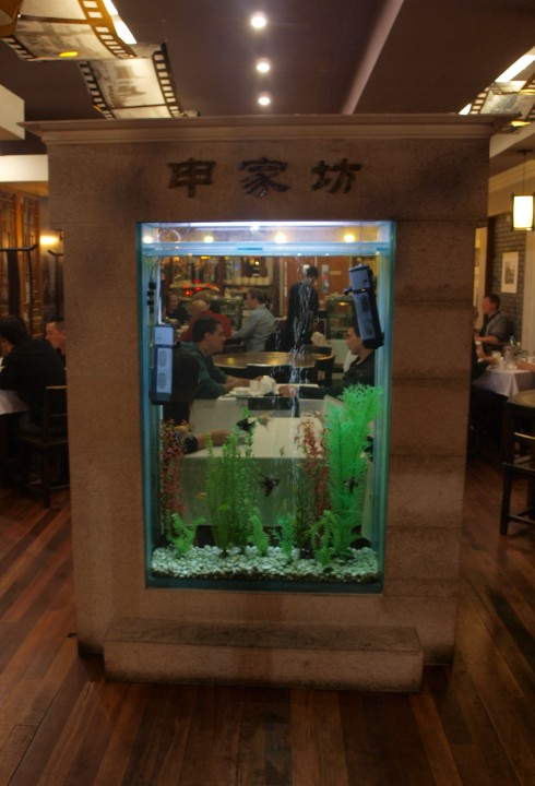 Nothing FIshy Here, Just Some Of The Best Chinese Food In Town
