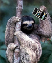 Being Slothful Just Got A Whole Lot Easier Thanks To Menulog And  The Internet